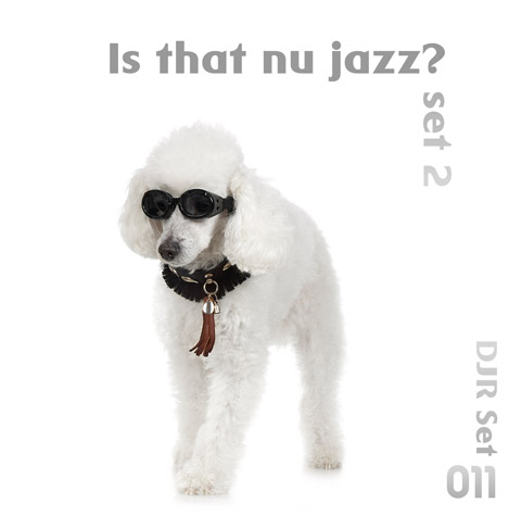 Is that Nu Jazz? - Set 2