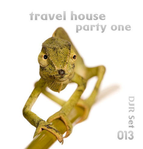 Travel House Party